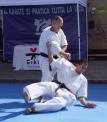 GIKO - Stage di Karate - Praticando Assieme